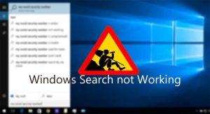 Windows 10 Search Not Working